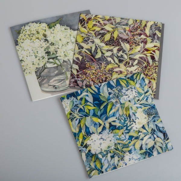 Nature Card Pack