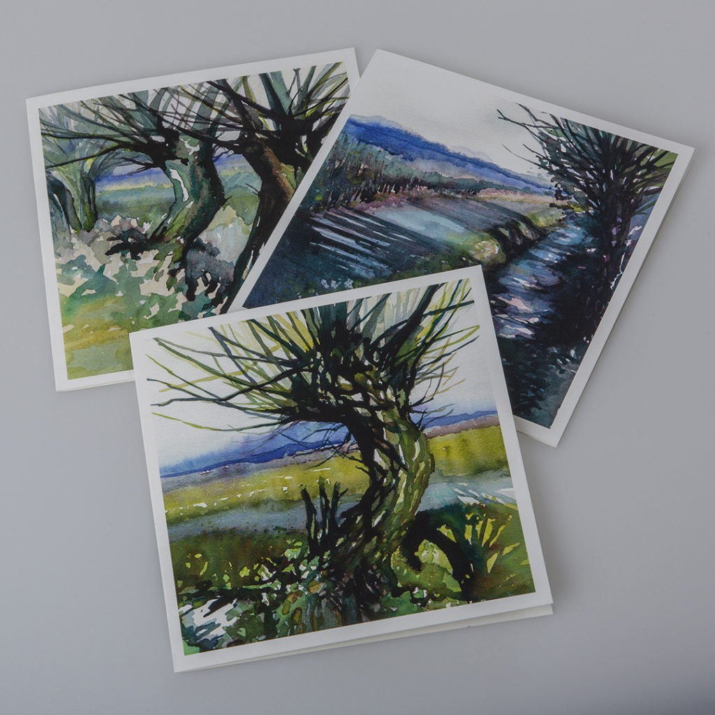 Pine Cone Boxed Cards Set