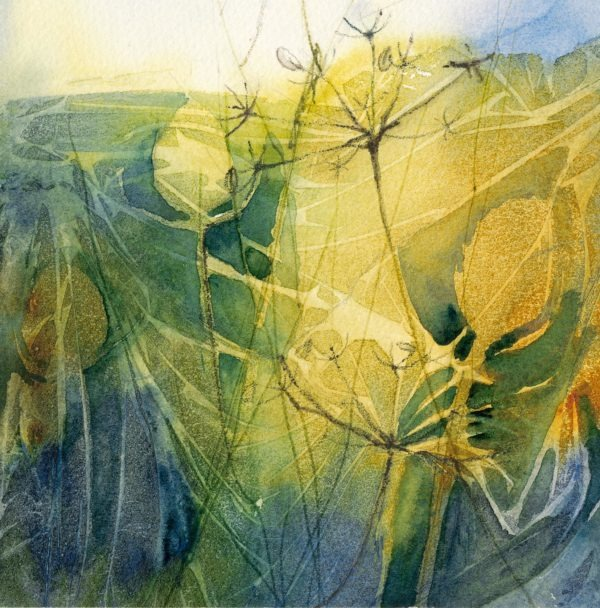 A Tangle of Teasels original print by Jackie Henderson