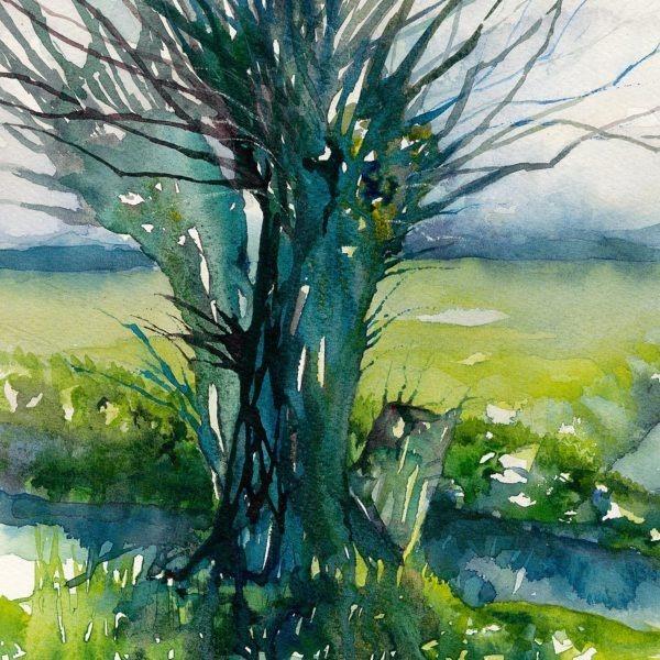 Green Willow Print